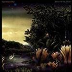 Fleetwood Mac - Tango In The Night [VINYL]